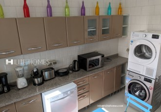 apartment for rent  hilitehomes (5)