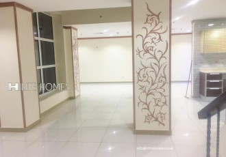 duplex for rent in fintas (3)