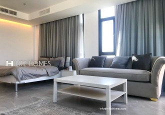 One bedroom furnished Penthouse in Salmiya