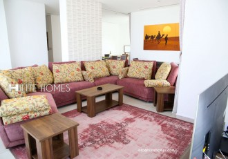 2&3br apartment for rent in salmiya (3)