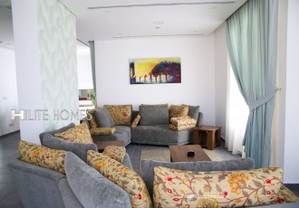 2&3br apartment for rent in salmiya (4)