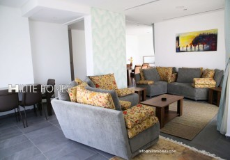 2&3br apartment for rent in salmiya (8)