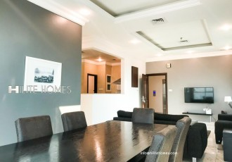 Two Bedroom Brand New furnished Apartment in Shaab